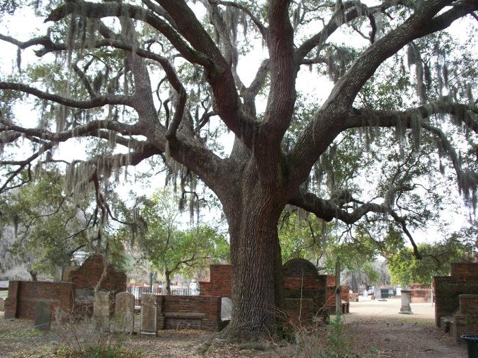 Day 3_Savannah_Colonial Park Cemetery 9