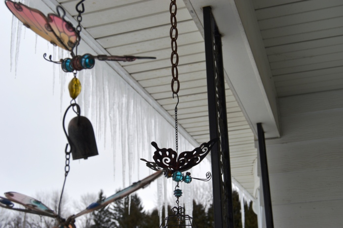 012316_Butterflies and Icicles