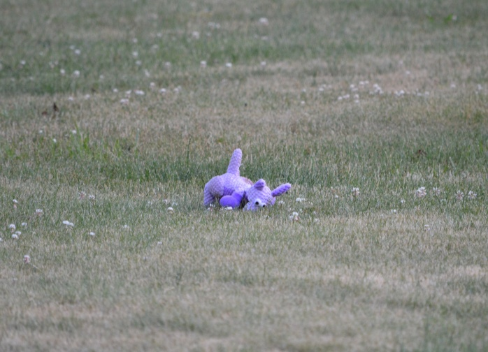 061816_Lonely Toy Left in the Yard