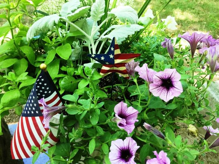 070316_Patriotic Flowers