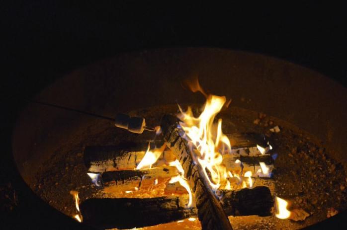 090916_marshmallows-roasting-on-an-open-fire