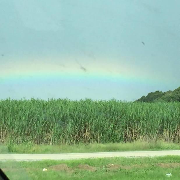 091516_rainbow-over-the-sugar-cane