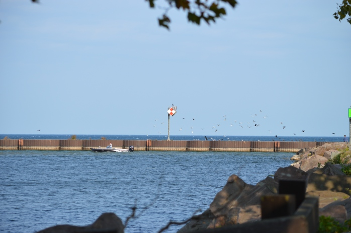 101816_beautiful-mid-october-day-on-lake-ontario