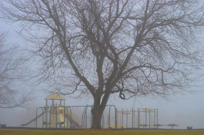 012117_foggy-playground_bullard-park