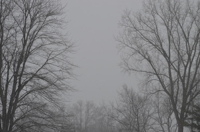 020517_gray-and-snow-hhhmmm_morning-sky