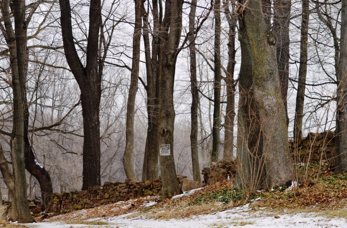 021117_stone-wall_old-tanner-cemetery