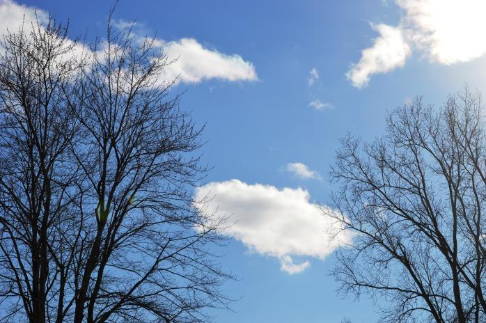 030417_bright-sunshiney-day