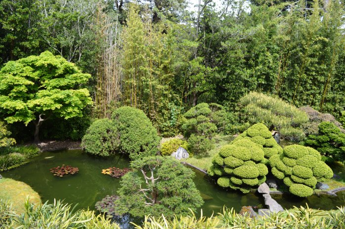 Japanese tea garden san francisco adventure kim 39 s thoughts for Japanese tea garden hours